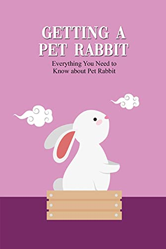 Getting A Pet Rabbit: Everything You Need to Know...