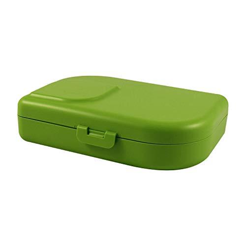 ajaa! Bio BROTBOX - Lunch-Box aus nachwachsenden...