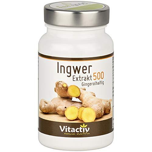 INGWER Extrakt 500 - Mehr als 160 Nährstoffe in...