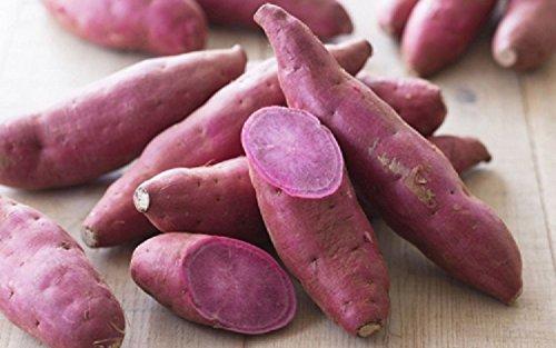 Violette Süßkartoffeln Ube Khoai lang tim 1 KG
