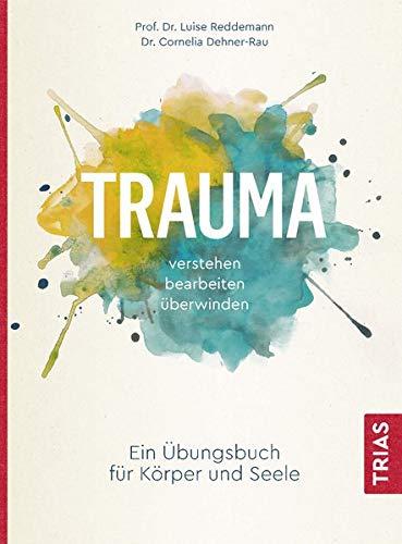 Trauma verstehen, bearbeiten, überwinden: Ein...