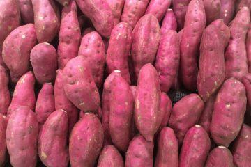 Lila Süßkartoffel